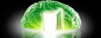 التربية العقلية في الإســــلام.. (13)
